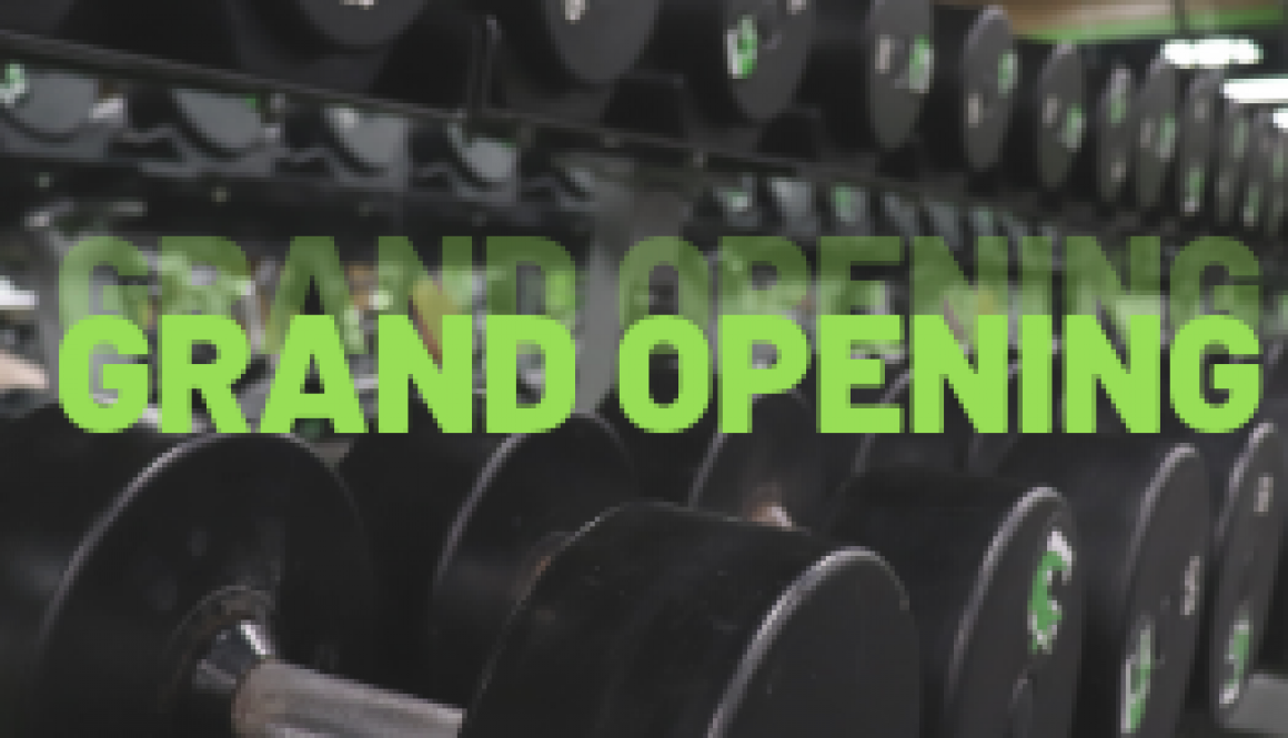 blog title for gator fitness grand opening